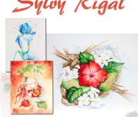 affiche sylvy rigal